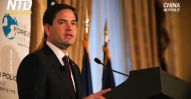 Senator AS, Marco Rubio