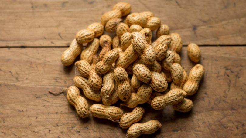 Kacang tanah (Isai Dzib @Unsplash)