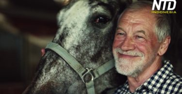Kakek pemilik kuda